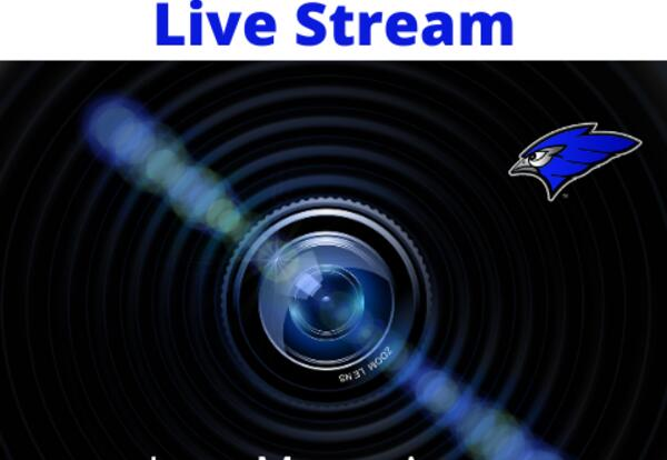 jmstbluejays video logo