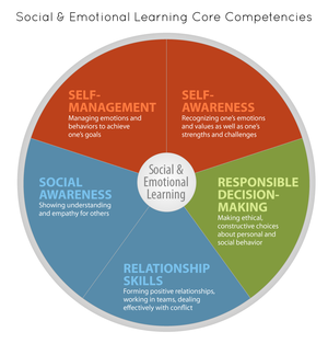 Social & Emotional Learning Care Competencies