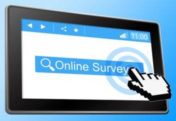 Online Survey Helps Provide Information About Public Schools