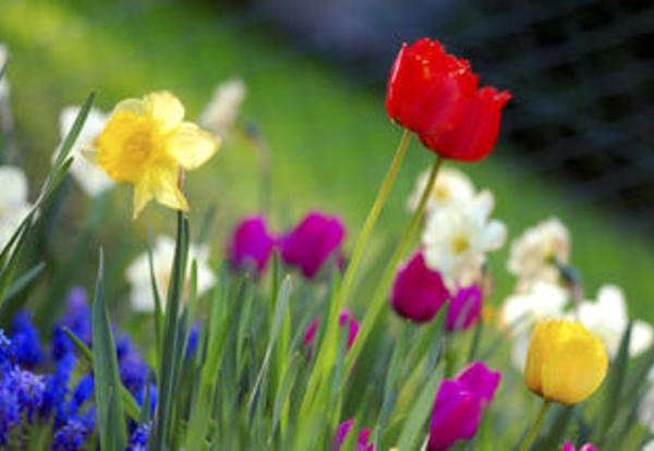Spring Brings Results!