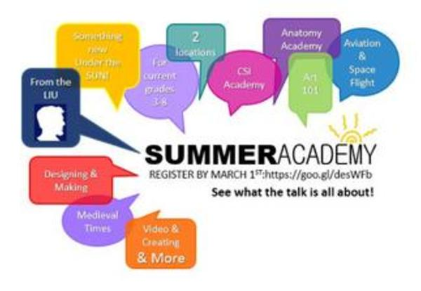 Applications are available for the LIU Summer Academy