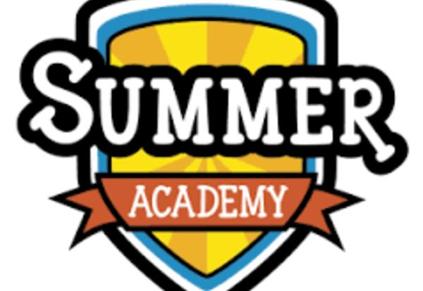 2018 LIU Summer Academy Career Camp Information