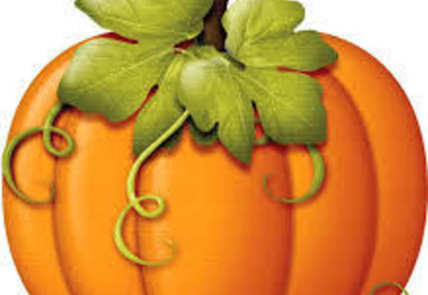 The Pumpkin Patch is Coming to US!
