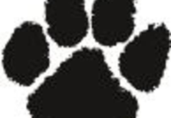 Paw Prints Show Bulldog Pride!