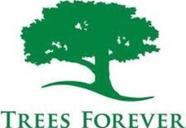 District to Plant Trees in October