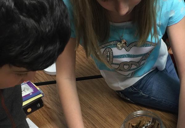 Redworm Habitats Excite 5th Grade!